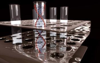 CRISPR testing for DNA