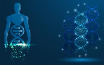 CRISPRs cure genetic disease