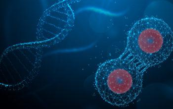 CRISPR gene editing therapy
