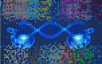 CARMEN CRISPR diagnostic tool