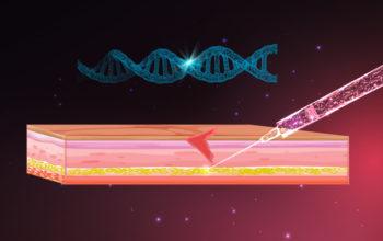 CRISPR hypersecreting cells for diabetics