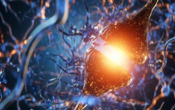 nerve cell mutliple sclerosis