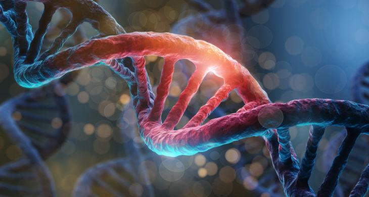 Nobel Prize in Chemistry for gene editing