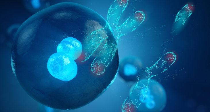 CRISPR unintended chromosomal deletions in human embryos