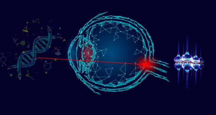 gene therapy regenrates optic nerve