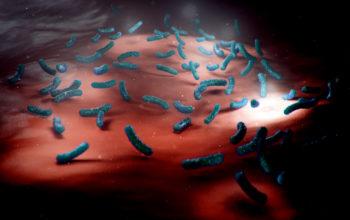 microbiota transplant for cancer treatment